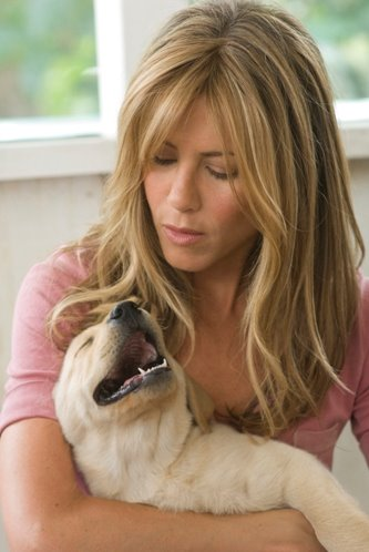 marley and me dvd. Marley and Me: DVD Review