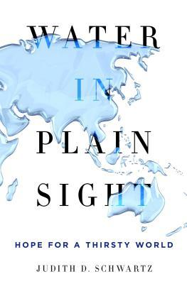 water-in-plain-sight